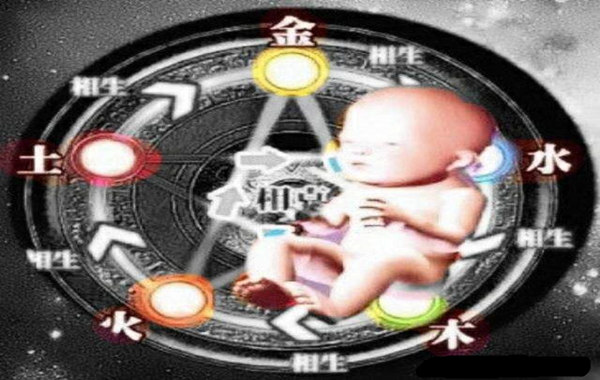 胎元是什么意思