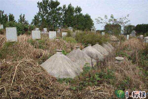 祖坟风水对后代影响有多大