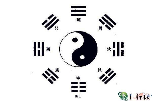 最全的六爻动爻知识详解