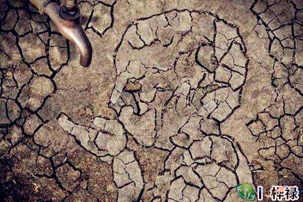 八字五行缺水之人注意什么,如何改运