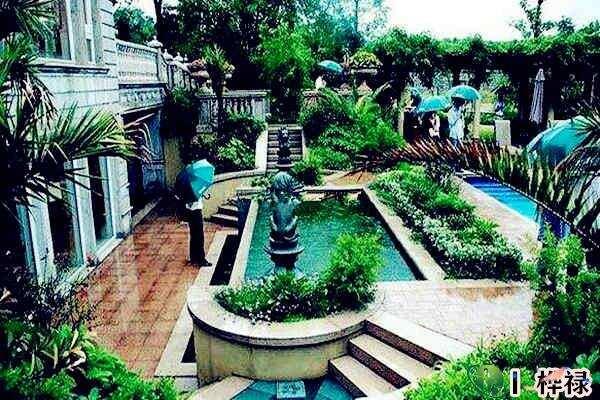 庭院种什么植物风水好
