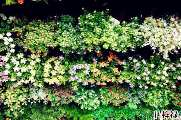 家中摆假花影响风水吗