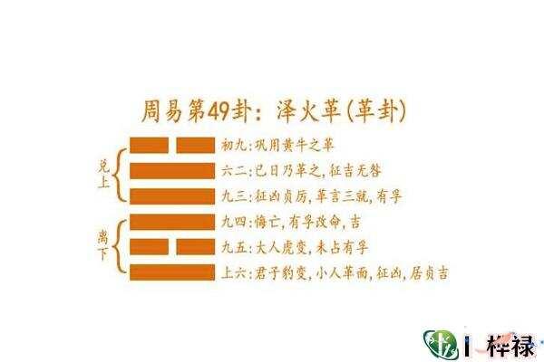 六十四卦:泽火革卦详解  第3张