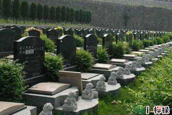 墓地朝向选择风水,如何选择墓地  第2张