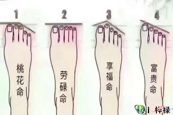 劳碌命的脚相特征