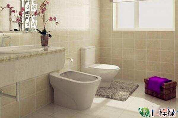 厕所马桶风水最佳方位  第3张