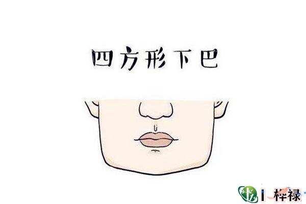 下颌面相解读  第1张