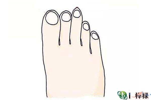 手和脚看财气特点
