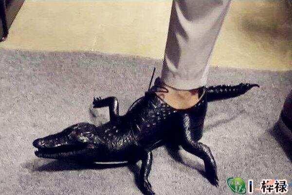 别人送的鞋子真的不能穿吗