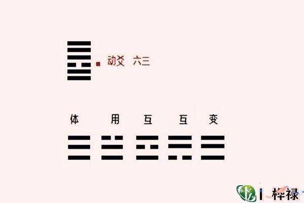 六爻动爻详解大全  第1张