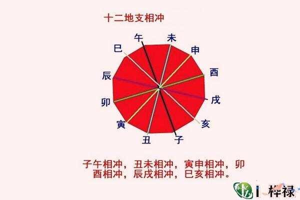六爻冲的表现方式  第1张