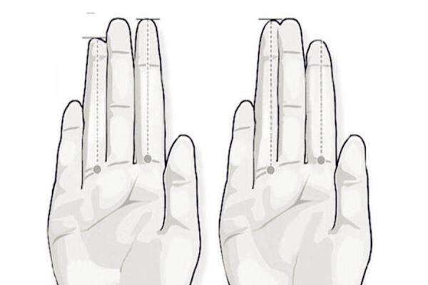 手掌五指断性情特点  第1张