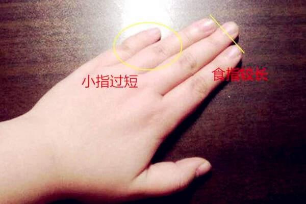 手相小拇指看性情特征  第1张