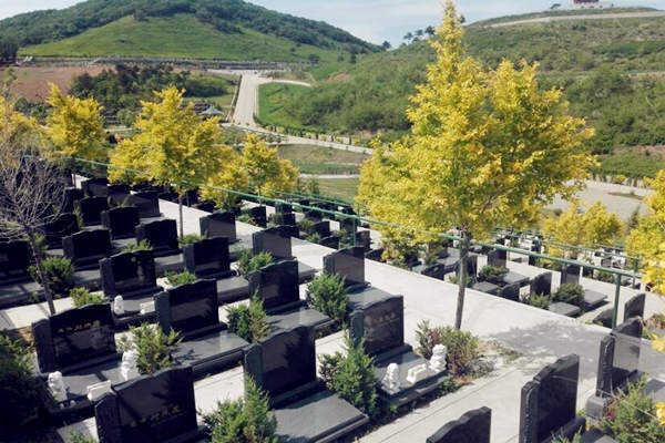 公墓风水的选择