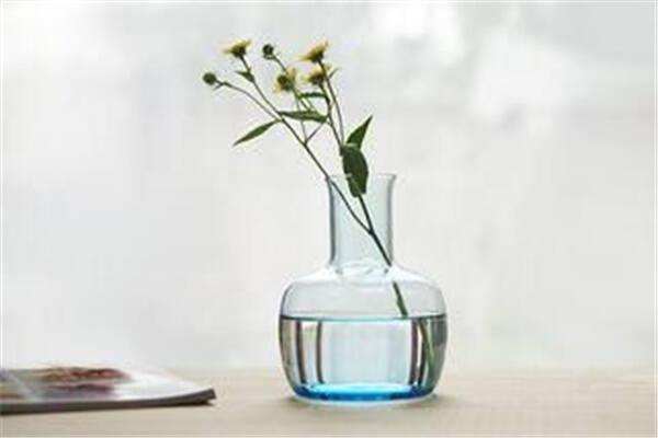家里放什么样花瓶风水好  第2张