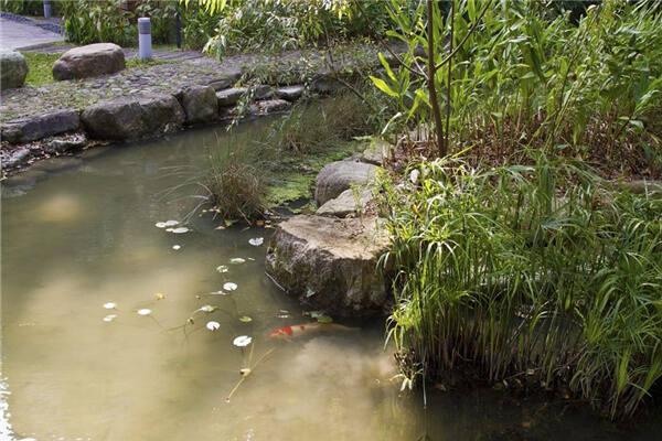 别墅庭院水池方位风水  第1张