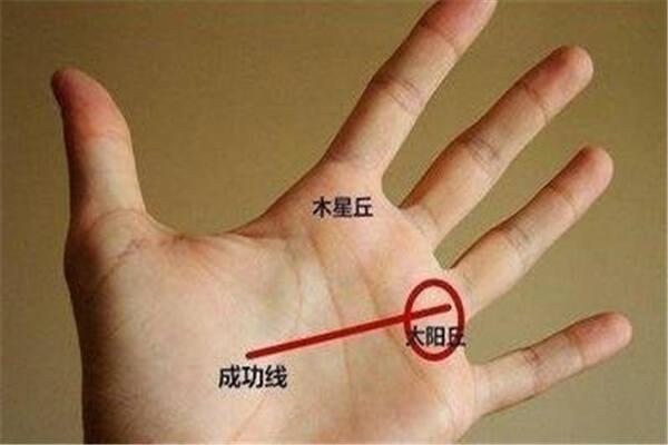 能赚大钱的手纹特征