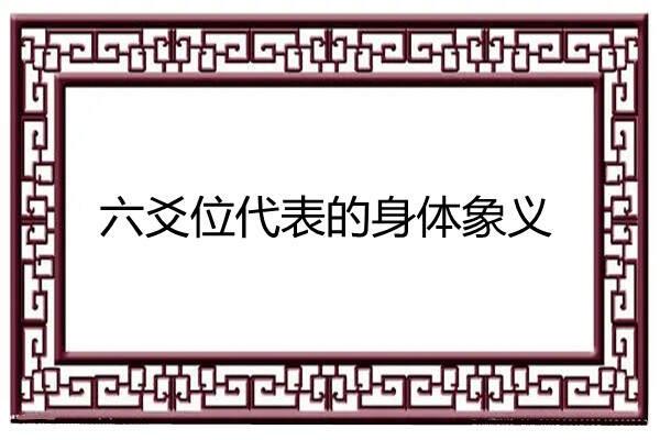 六爻位代表的身体象义