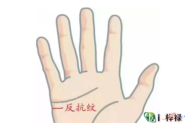 手相基础:认识手相反抗线