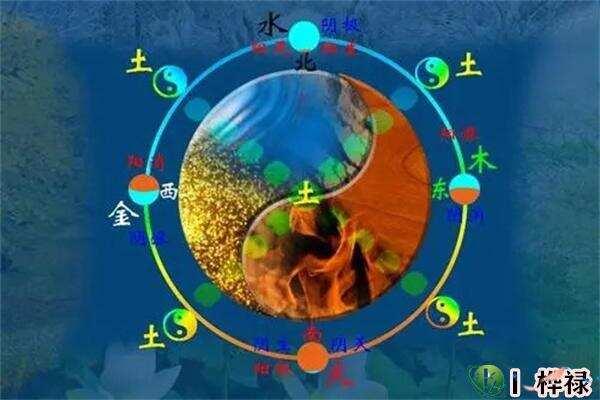 易经中阴阳五行的起源由来