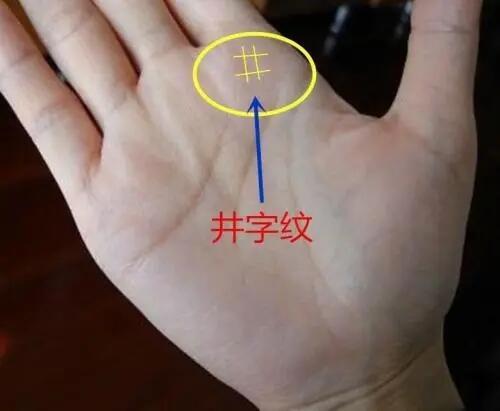手掌有井字纹命好吗